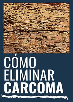 Cómo eliminar la carcoma?