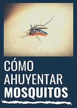 ¿cómo ahuyentar los mosquitos?