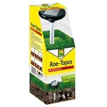 Roe-topos