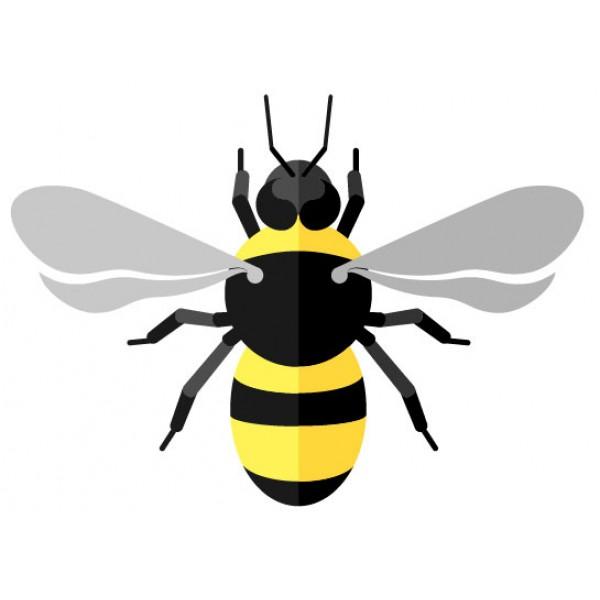 Insecticidas para avispas