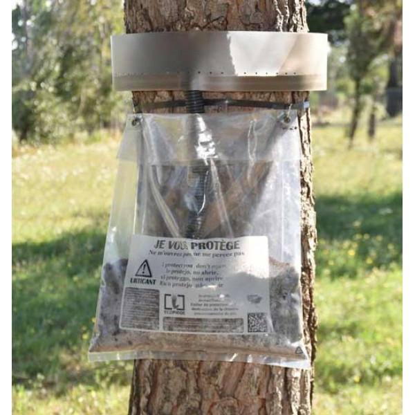 Collar Ecopiege de la procesionaria del pino