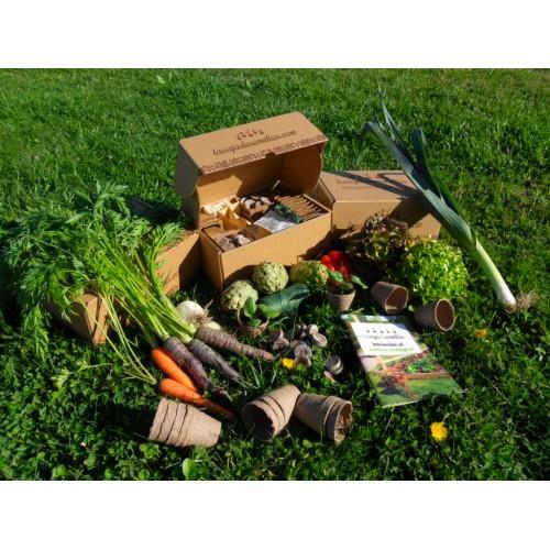 Kits de Cultivo